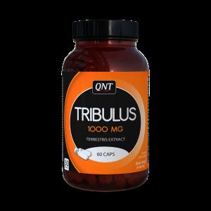 Qnt tribulus 1000mg testosterone